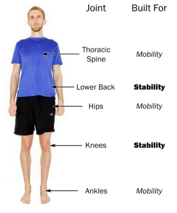 The joint-by-joint approach explains how low ankle mobility can cause knee pain.